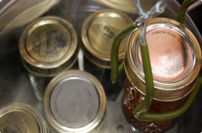Canning: Boiling Water Method