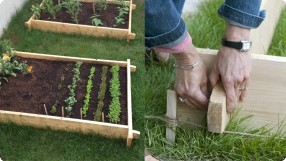 Small Space Gardening (Part 4): Raised Garden Bed Basics